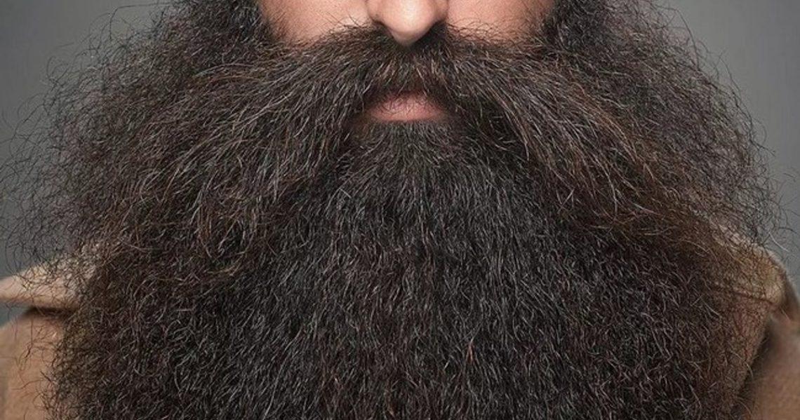 Из какого языка слово борода