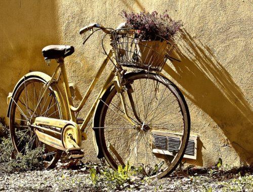 Из какого языка слово велосипед