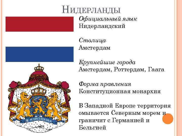 На каком языке говорят голландцы