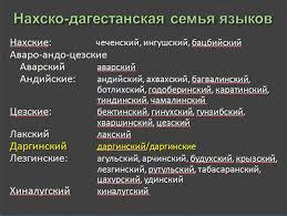 нахско-дагестанская языковая семья
